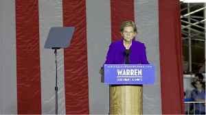 Wealth tax sending Warren into nosedive [Video]