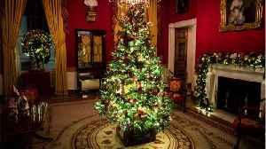 The White House Christmas Decorations You May Have Missed [Video]