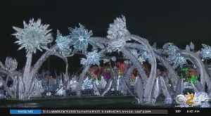 New York City's Best Holiday Light Festivals [Video]