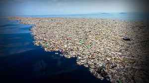 A radical plan to end plastic waste | Andrew Forrest [Video]
