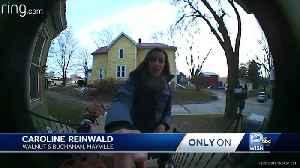 FedEx driver meltdown caught on camera [Video]