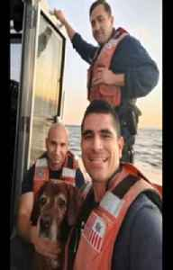 Coast Guard rescues dog in beautiful moment [Video]