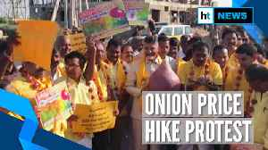 Onion prices skyrocket across nation, Chandrababu Naidu holds protest in Andhra [Video]