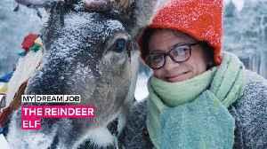 My Dream Job: Meet the elf who takes care of Santa's reindeer [Video]