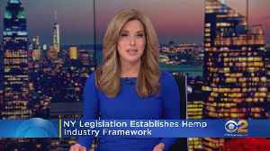 Gov. Cuomo Moves To Regulate Production, Sale Of Hemp, CBD [Video]