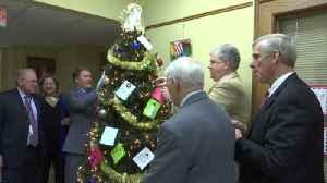 Legal Aide Christmas Tree [Video]