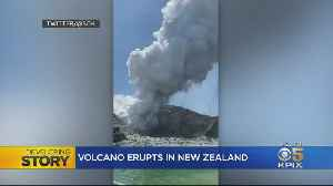 Bay Area Family Narrowly Escapes Death In New Zealand's White Island Volcanic Eruption [Video]