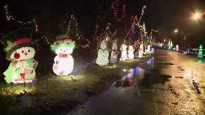 Grandpa Gang Puts Up Impressive Christmas Light Display in Illinois Park Each Year [Video]