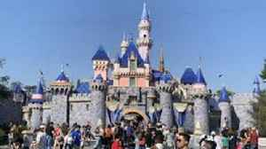 Disneyland Workers File Lawsuit Claiming They Aren`t Being Paid a Living Wage [Video]
