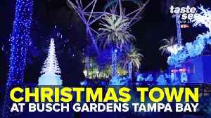 Christmas Town at Busch Gardens Tampa Bay | Taste and See Tampa Bay [Video]