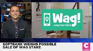 SoftBanks Pulls Investment From Wag [Video]