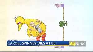 CAROLL SPINNEY DIES [Video]