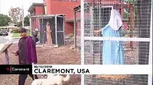 Church's nativity scene in cages to highlight plight of refugees [Video]
