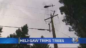 PG&E Using High-Powered Heli-Saw To Trim Trees Away From Power Lines [Video]