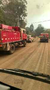 Fire Trucks Respond to Bushfire Raging in New South Wales in Australia [Video]