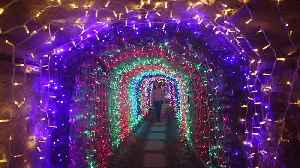Video shows inside the UK's longest festive tunnel of lights that has opened in Cornwall [Video]