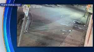 Web Extra: Miami Armed Robbery [Video]