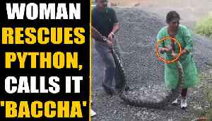 Woman rescues 20 KG python, lovingly calls the reptile 'baccha' | Oneindia News [Video]