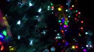 Hutsonville Christmas tree display helps remember lost loved ones [Video]