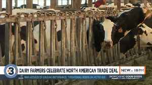 Wisconsin dairy farmers hopeful ahead of trade deal, industry expert says more work to be done [Video]