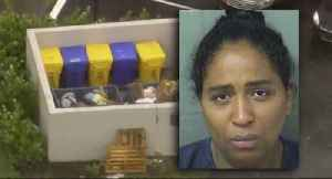 Documents: Mother accused of dumping baby found out child was alive from police [Video]