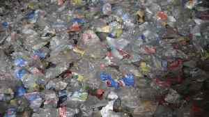 Scientists Turn Plastic Waste into Electricity [Video]