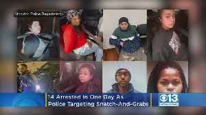 14 Arrested In One Day As Stockton Police Target Mall Snatch-And-Grabs [Video]
