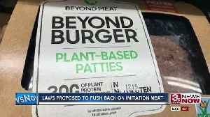 News video: Laws Proposed to Push Back on Imitation Meat