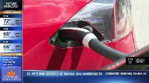 'We need charging stations:' Florida bill would help bolster state's electric vehicle infrastructure [Video]
