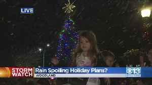 Woodland Christmas Tree Lighting [Video]