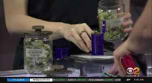 Cannabis Company Launches Its Own Credit Card [Video]