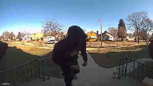 Milwaukee Police officers need help identifying a porch pirate suspect [Video]