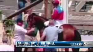 National Day of the Horse [Video]