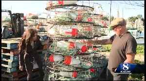 Commercial dungeness crab season is open on the Central Coast [Video]