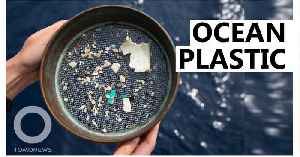 There are a million times more microplastics in the ocean: Study [Video]