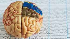 Cyber Attack Targeted Epileptics By Hacking Epilepsy Foundation [Video]