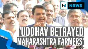 'Betrayed Maharashtra farmers': Fadnavis slams Uddhav for u-turn from own demand [Video]