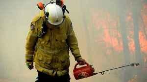 News video: Australia declares state of emergency as heatwave fans bushfires