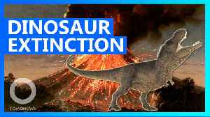 Volcanic climate change may have contributed to dinosaur extinction [Video]