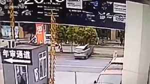 News video: Car powers over tree after rookie driver accidentally presses accelerator in south China