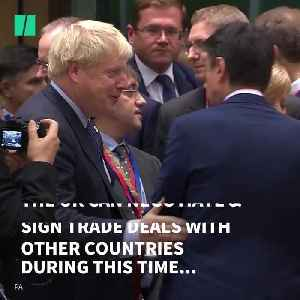 Brexit Withdrawal Agreement Bill Passes: What Next? [Video]