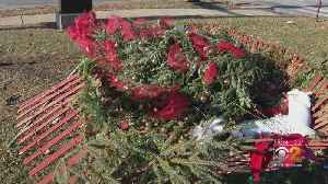 Christmas Tree Mowed Down In Washington Park [Video]