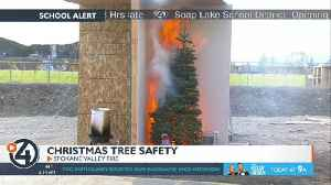 HappyLife: Christmas tree fire prevention [Video]