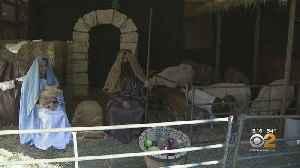 Live Nativity Scene In The Bronx [Video]