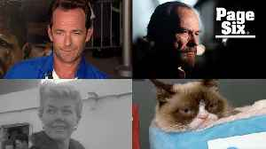 In memoriam: All the celebrities we lost this year [Video]