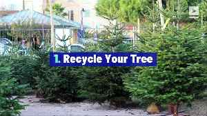 5 Eco-Friendly Ways to Get Rid of Your Christmas Tree [Video]