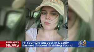 14-Year-Old Suspect In Deadly Barnard Student Stabbing Found [Video]