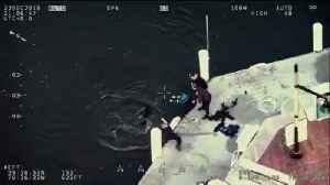 Baltimore Police rescue dog from harbor [Video]