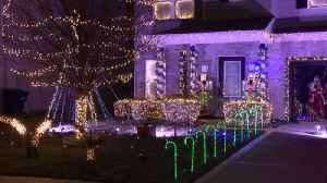 christmas lights [Video]