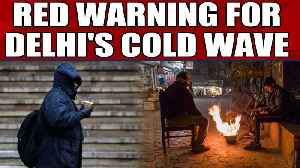 News video: Red warning issued over Delhi's cold wave conditions | OneInida News
